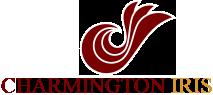 Charmington Iris